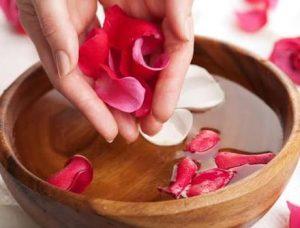 طريقة تقطير ماء الورد في المنزل