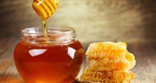 صور عسل