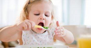 اكلات تسمن الاطفال في اسبوع – مفهرس